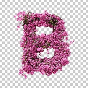 부겐빌레아 문자 b의 3d 렌더링