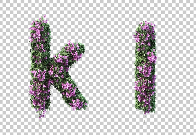 3d-рендеринг бугенвиллии буквы k и буквы l