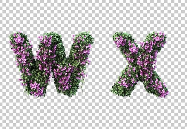 3d-рендеринг бугенвиллии буквы w и буквы x