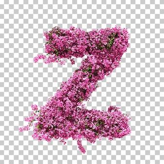 부겐빌레아 문자 z의 3d 렌더링