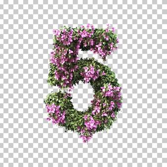 부겐빌레아 5 번의 3d 렌더링
