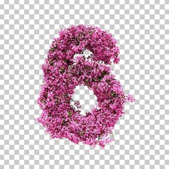 3d-рендеринг бугенвиллии № 6