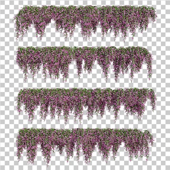 3d-рендеринг бугенвиллеи