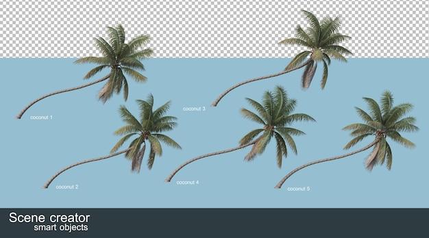 코코넛 나무와 야자수의 3d 렌더링