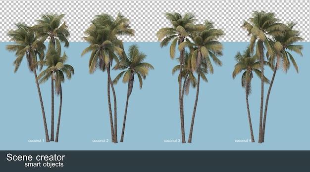 ココナッツの木とヤシの木の3dレンダリング