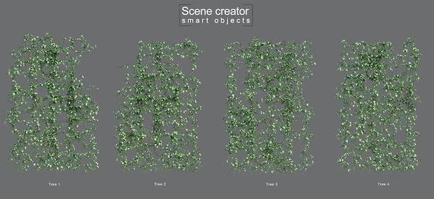 크리핑 epipremnum aureum 장면 작성자의 3d 렌더링