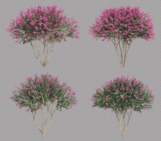 サルスベリの木セットの3dレンダリング