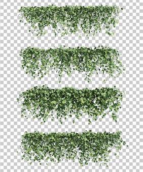 Epipremnum aureum의 3d 렌더링