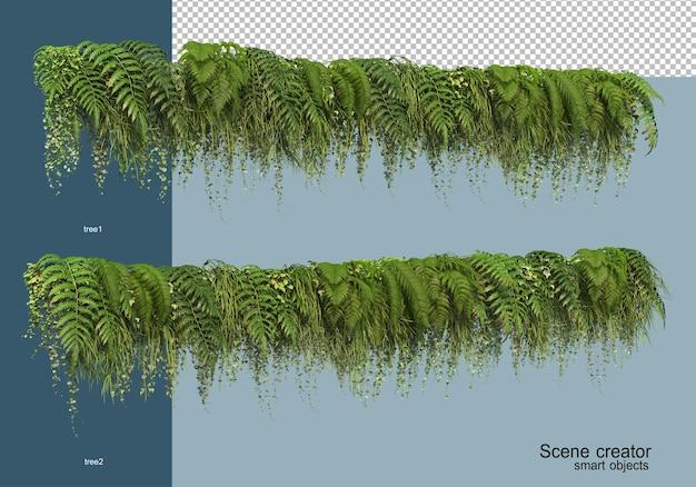 分離された開花低木の3dレンダリング