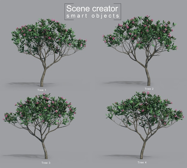 フランジパニの木のシーンクリエーターの3 dレンダリング