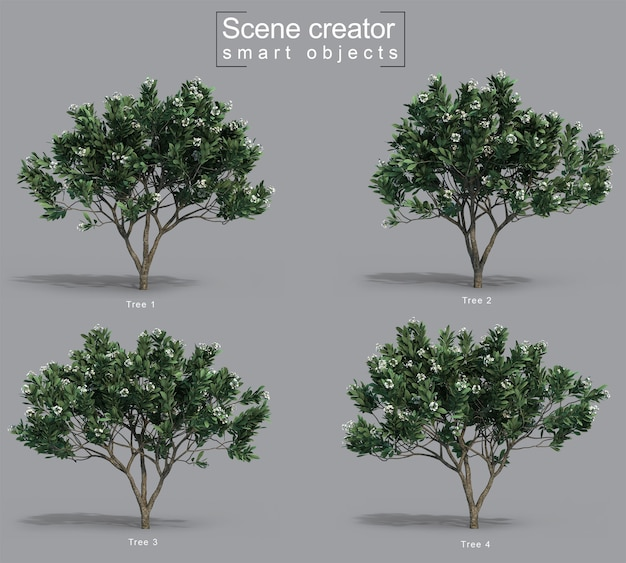 3d-рендеринг создателя сцены дерева франжипани