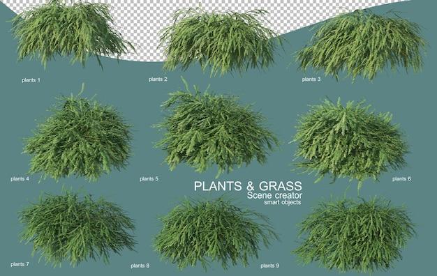 3d-рендеринг травяных и кустарниковых композиций