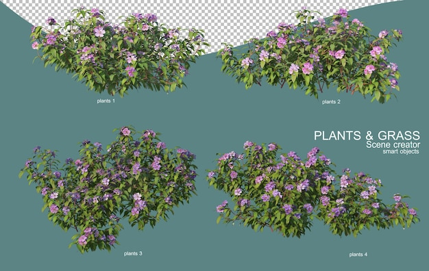 草や低木の配置の3dレンダリング