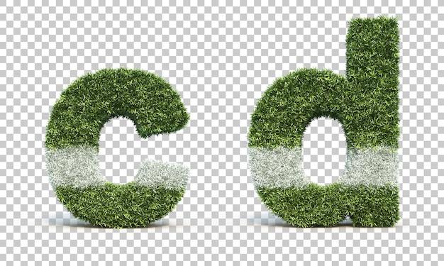 잔디 경기장 알파벳 c와 알파벳 d의 3d 렌더링