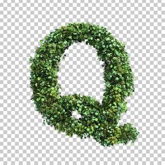 緑の植物アルファベットqの3 dレンダリング