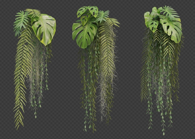 ぶら下がっている植物コレクションの3dレンダリング