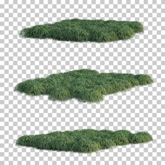 日本の森の草の3 dレンダリング