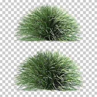 3d-рендеринг травы мондо