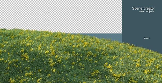 3d-рендеринг сосен на травянистом склоне холма