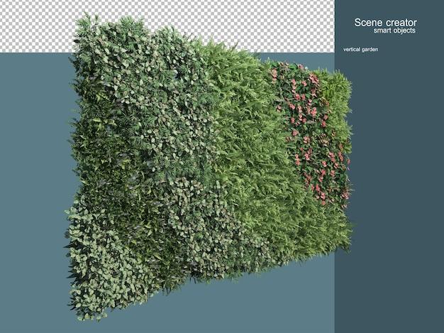 고립 된 식물 울타리의 3d 렌더링