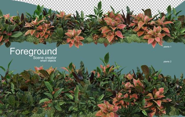 植物の前景デザインの3dレンダリング