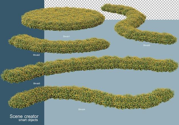 分離された灌木配置の3dレンダリング