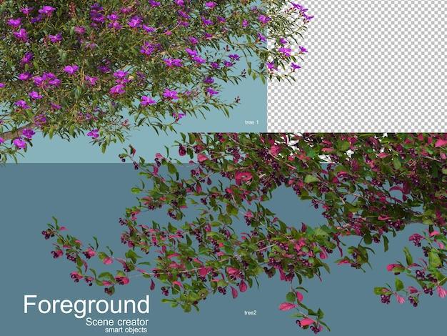 고립 된 나무 foregroung의 3d 렌더링