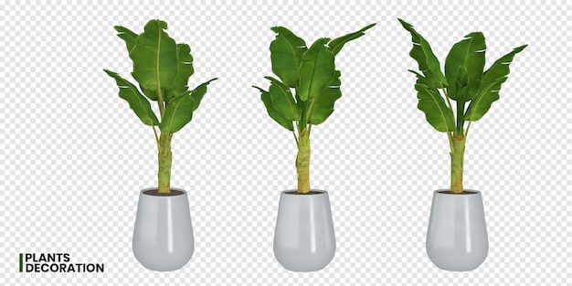 鍋に植物のさまざまな角度の3 dレンダリング