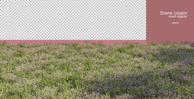 3d-рендеринг различных трав