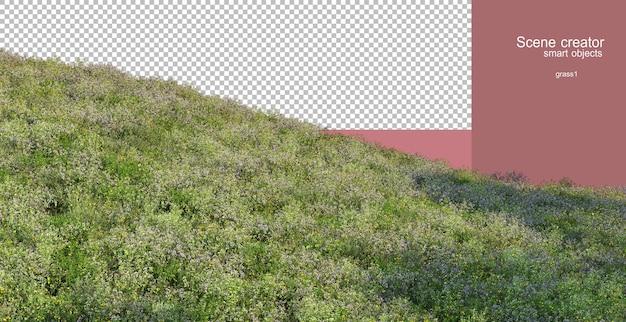 さまざまな草の3dレンダリング