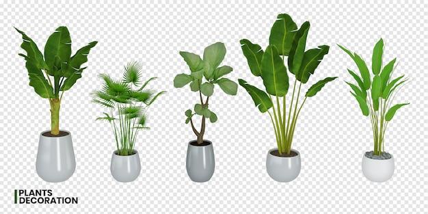 냄비에 다양한 식물의 3d 렌더링