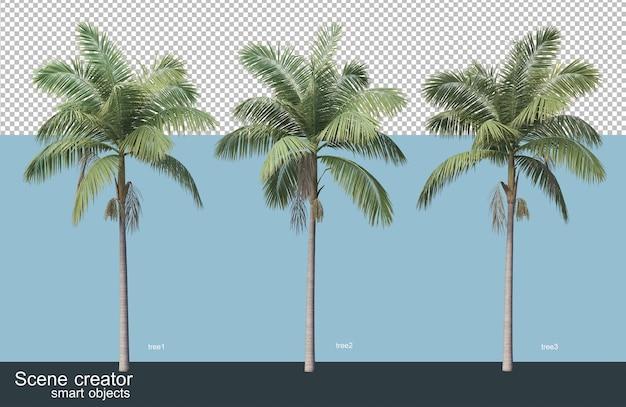 3d-рендеринг различных видов деревьев