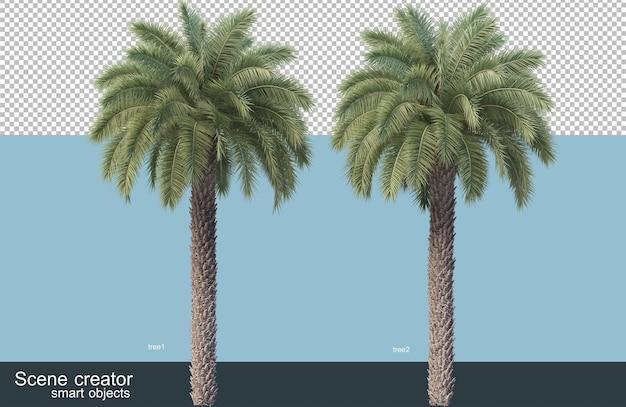 다양한 종의 나무의 3d 렌더링