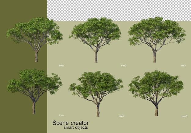 고립 된 다양 한 나무 디자인의 3d 렌더링
