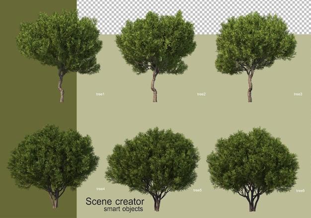 다양한 나무 디자인의 3d 렌더링