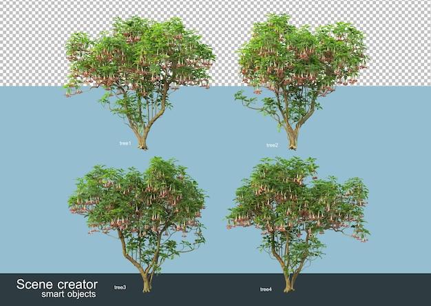 さまざまな木の形や種類の3dレンダリング