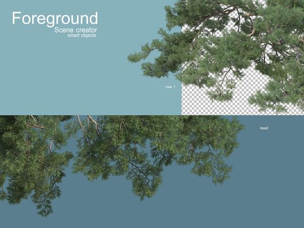 다양한 나무 전경의 3d 렌더링