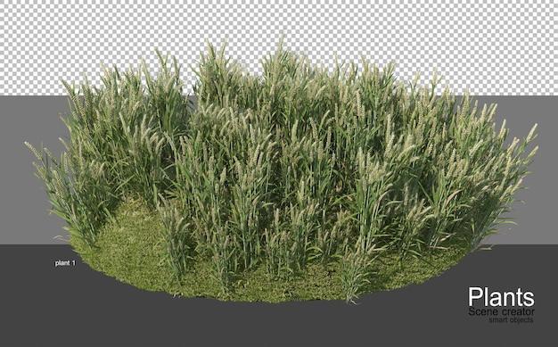 다양한 유형의 농업 경제학의 3d 렌더링