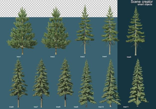 다양한 종류의 소나무의 3d 렌더링