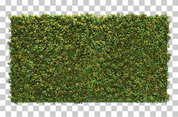수직 정원의 3d 렌더링