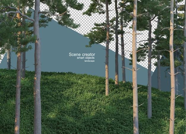 3d rendering of pine trees on the grassy hillside