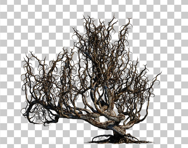 3d rendering of scary death tree