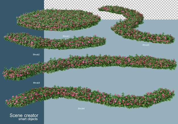 3d rendering of shrubs arrangement isolated