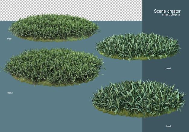 3d рендеринг цветочного поля