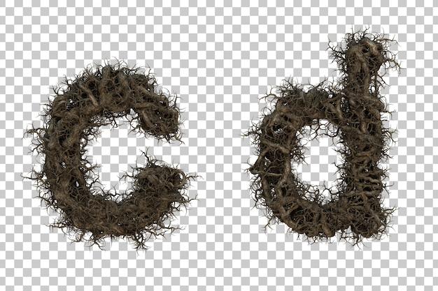 3d rendering tree branch alphabet c and alphabet d