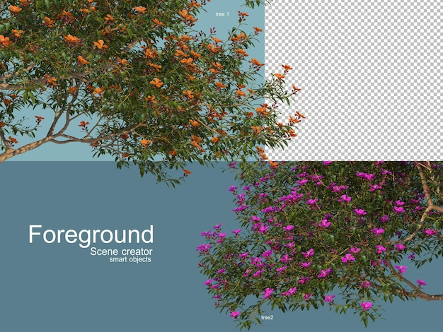 3d rendering of trees foregroung isolated