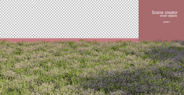 3d rendering of various grasses