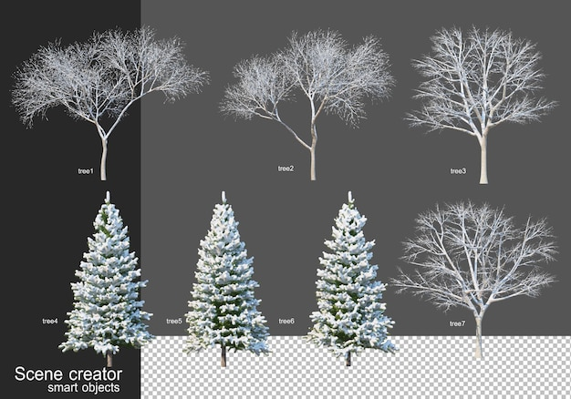 3d rendering various kinds of winter trees