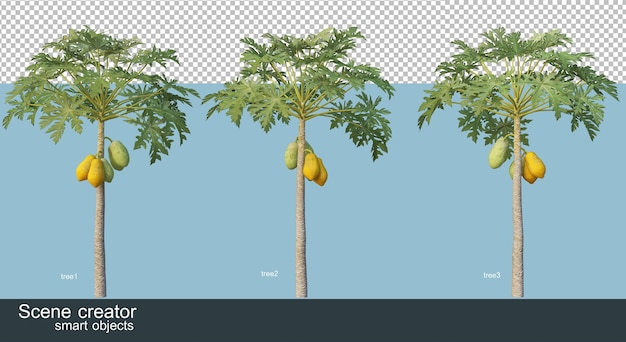 3d rendering of various species of trees