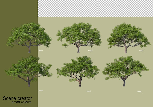 3d rendering of various tree design isolated Premium Psd